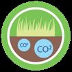 Poços de Carbono